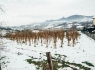 donostitik-nieve-aduna-02