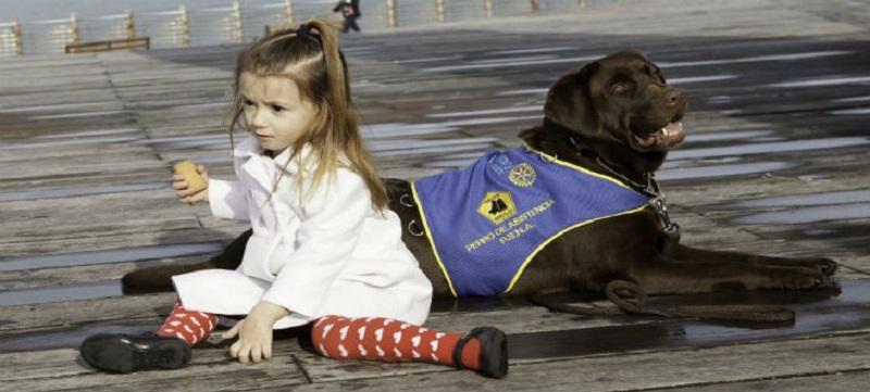 El Rotary financia proyectos como el de la niña con autismo que requería un perro adiestrado. Foto: Rotary