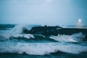 IMG5773 300x200 - Un barco en tierra y árboles caídos como resultado del temporal