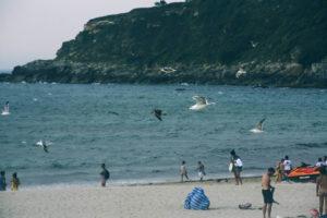IMG2683 300x200 - La galerna anunciada por Euskalmet terminó con el día de playa