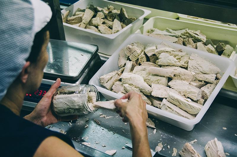 donostitik bonito eusko label 25 1 - Más de 1.500 toneladas de bonito del Norte han llegado a los puertos en lo que va de campaña