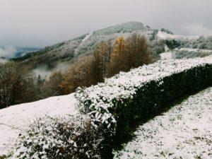 2017 11 30 10.12.29 1 800x600 300x225 - La nieve irrumpe en Gipuzkoa