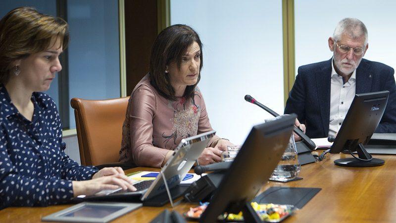 Beatriz Artolazabal El Gobierno vasco cifra en el 0,9% los casos de fraude a la RGI