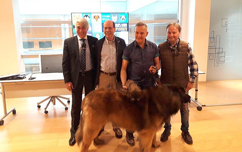 Ficoba 2 Exposición Canina Internacional el domingo en Ficoba