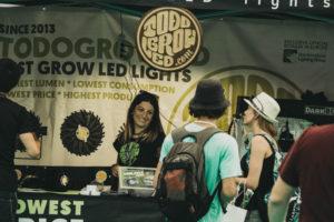 IMG7788 300x200 - El mundo (aún por conocer) del cannabis se abre en Expogrow