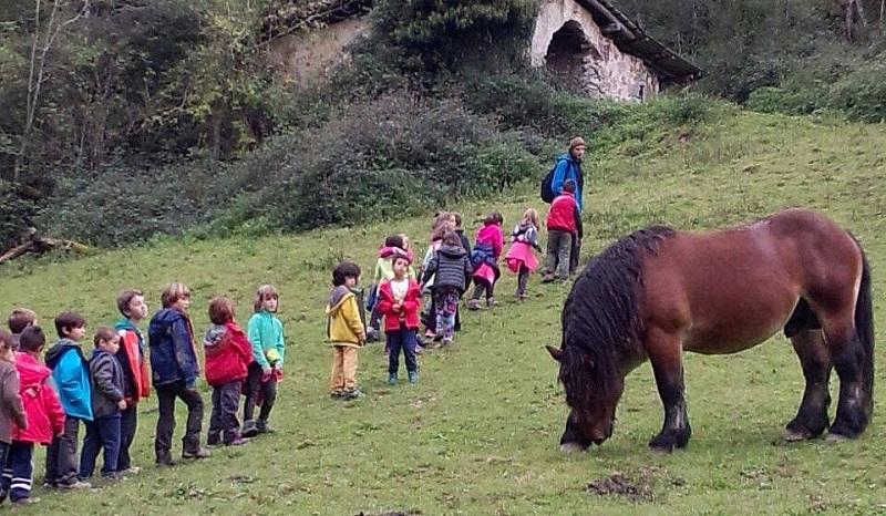 Actividades en la Granja Escuela Sastarrain (Zestoa). Foto: Zestoa Turismo.