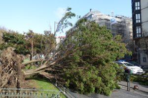 IMG 20200303 WA0009 300x200 - El viento provoca más de 220 llamadas por emergencias en Donostia
