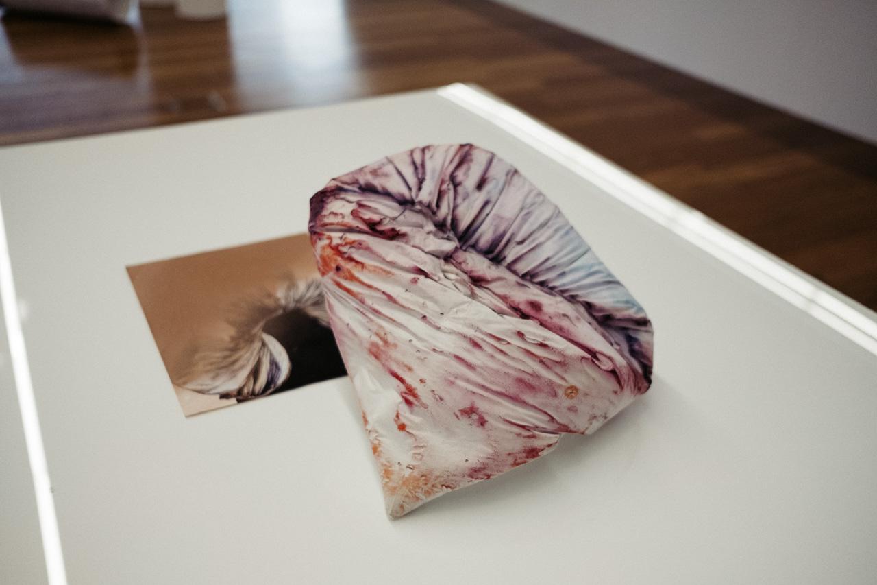 DSCF9072 - Nagore Amenabarro inaugura con 'Platina' el proyecto 'Arte abian'