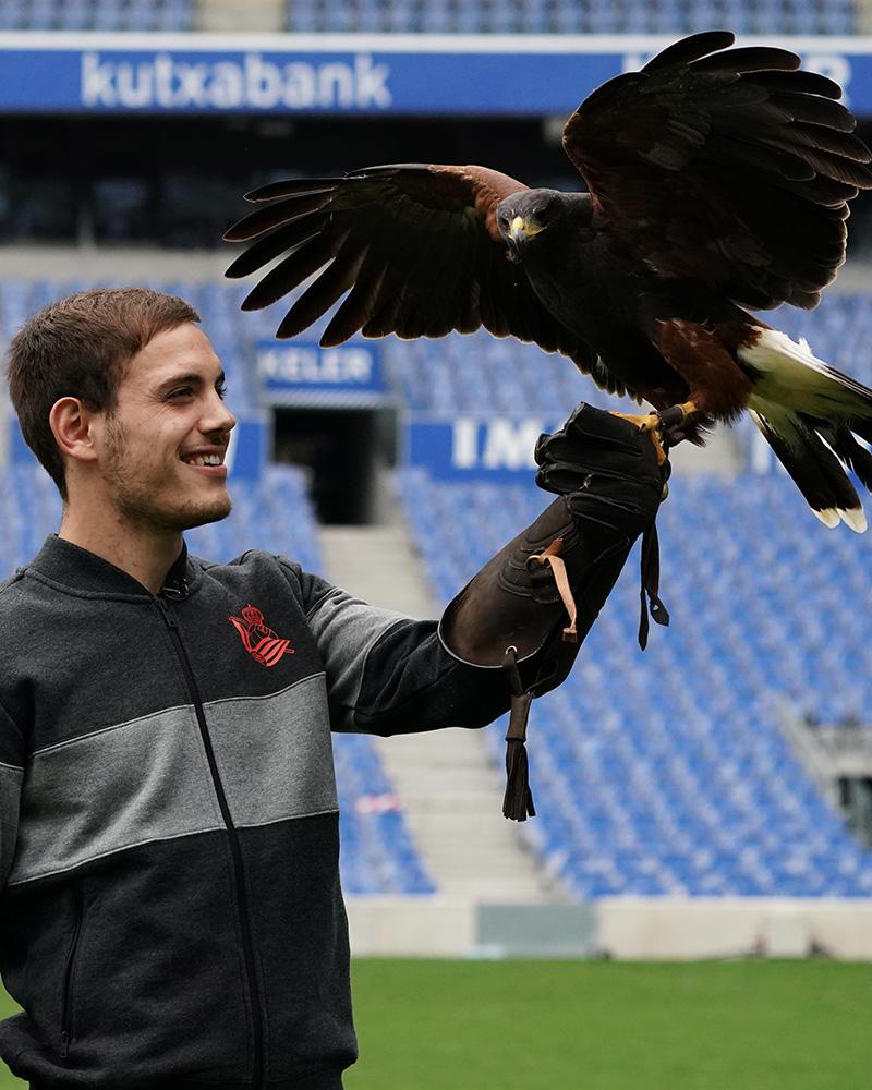 Foto halcones 11 - Halcones vigilantes en el Reale Arena