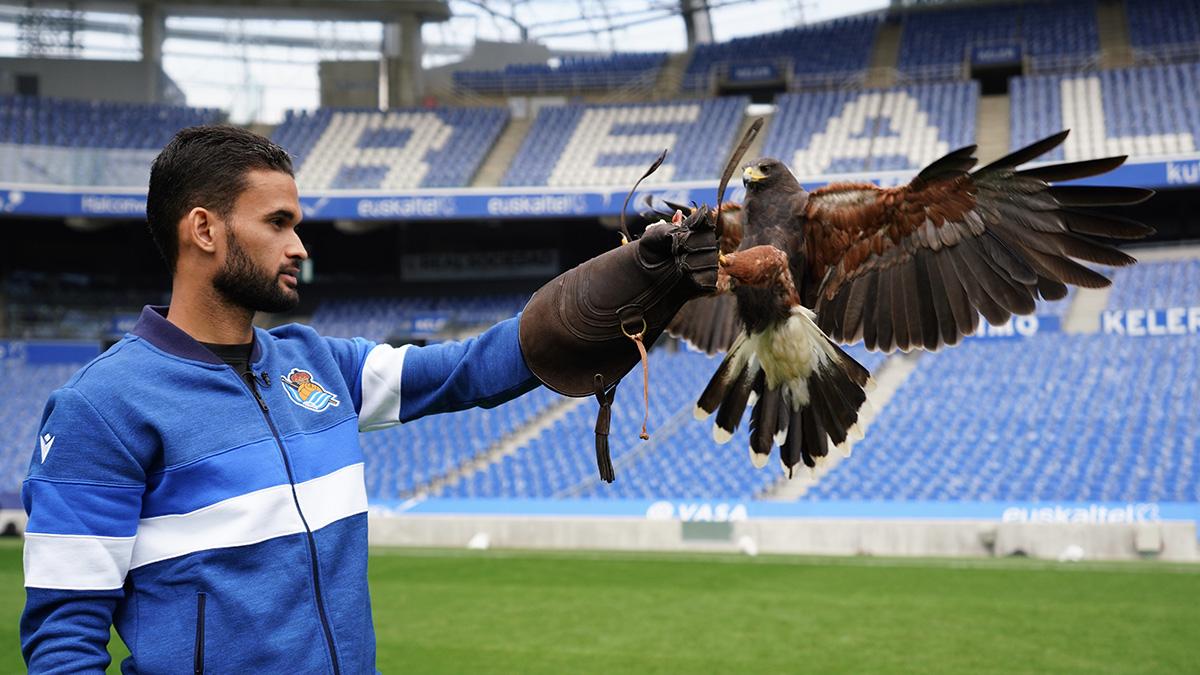 Foto halcones 2 - Halcones vigilantes en el Reale Arena