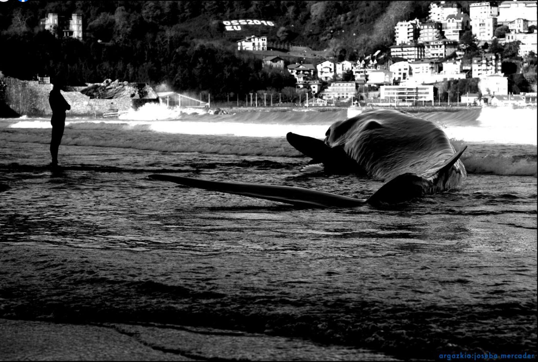 """Foto: Documental """"Balearen Begia"""""""