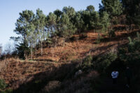 DSCF5201 Riesgo de incendios forestales este sábado en Gipuzkoa
