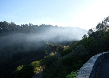 Humo del incendio en el Monte Ulia. Foto: Santiago Farizano