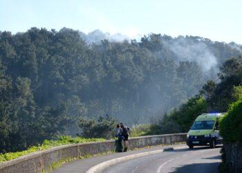 Humo tras el fuego en Ulia el pasado 8 de abril. Foto: Santiago Farizano