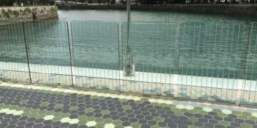 Puente Lehendakari Agirre reforzado contra los accidentes de las aves. Foto: Ayto.